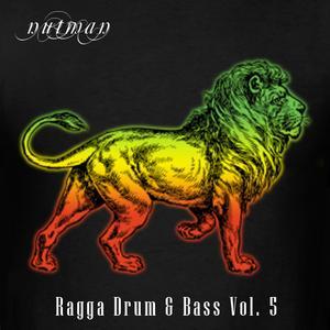 Ragga Drum & Bass Volume 5